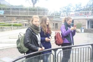 Regine, Sunniva og Mathilde ser på pingvinene