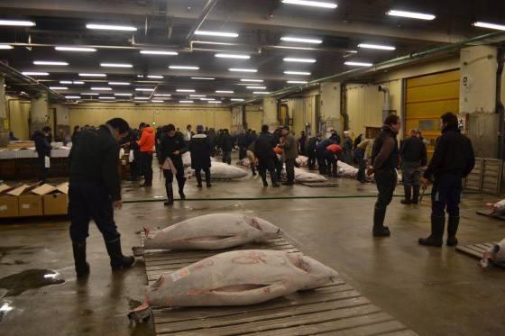 Fiskemarknaden - meg